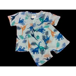 My Curious Baby Dinosaur Short Sleeve Shirt and Pants